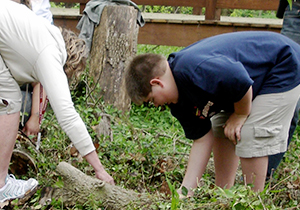 Student and teacher remove unwanted plants from site