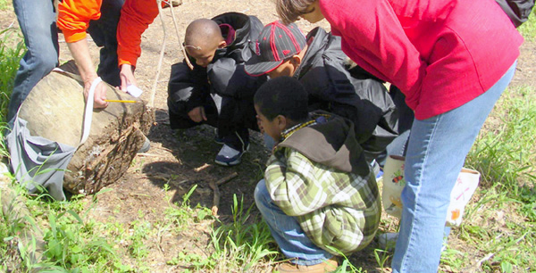 students investigate what lives under a rock